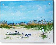 Dunes Denizens Acrylic Print