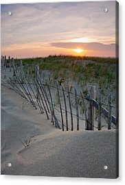 Dunes Of Cape Cod Acrylic Print by Patrick Downey