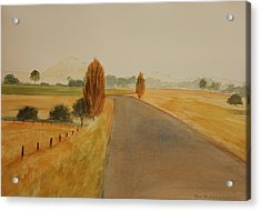 Acrylic Print featuring the painting Dungog Area Nsw Australia by Tim Mullaney