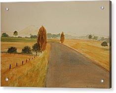 Dungog Area Nsw Australia Acrylic Print