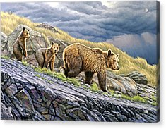 Dunraven Pass Grizzly Family Acrylic Print