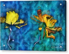 Duo Daisies - 01c2t5dp01e Acrylic Print by Variance Collections