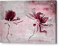 Duo Daisies - 43t3red Acrylic Print by Variance Collections