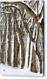 During The Storm Acrylic Print