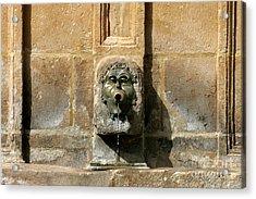 Duron Fontain Acrylic Print by Leo Cavallo