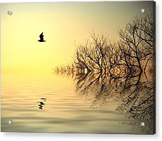 Dusk Flight Acrylic Print by Sharon Lisa Clarke
