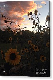 Dusk In Taos Acrylic Print by Polly Anna