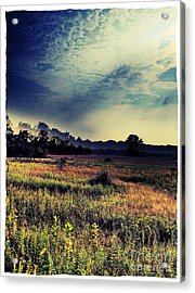 Dusk In The Pasture Acrylic Print