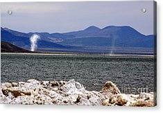 Acrylic Print featuring the photograph Dust Devils Of Mono Lake by Thomas Bomstad