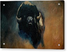 Dusty Buffalo Acrylic Print