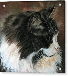 Dusty Our Handsome Norwegian Forest Kitty Acrylic Print by LaVonne Hand