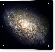 Dusty Spiral Galaxy Acrylic Print by Celestial Images