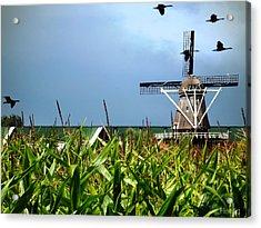 Dutch Windmill In Summer Acrylic Print by Yvon van der Wijk