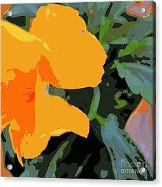 Duvet 87 Acrylic Print