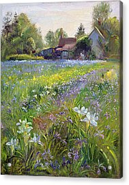 Dwarf Irises And Cottage Acrylic Print by Timothy Easton