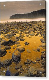 D.wiggett Rocks On Beach, China Beach Acrylic Print