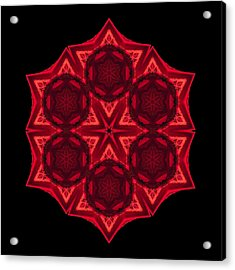 Acrylic Print featuring the photograph Dying Amaryllis IIi Flower Mandala by David J Bookbinder