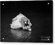 Dying Swan 4. Acrylic Print