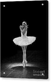 Dying Swan 5. Acrylic Print
