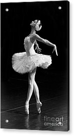 Dying Swan I. Acrylic Print by Clare Bambers