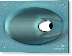 Eagerman Blue Acrylic Print