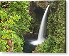 Eagle Creek Flows Over Loowit Falls Acrylic Print by William Sutton
