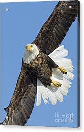 Eagle Embankment Acrylic Print by John Blumenkamp