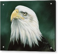 Eagle Eye Acrylic Print