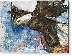 Eagle In Flight Acrylic Print by Ismeta Gruenwald