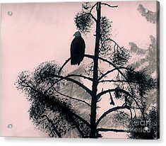 Acrylic Print featuring the drawing Eagle In Pink Sky by D Hackett