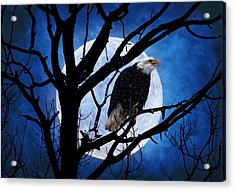 Eagle Night Acrylic Print