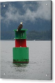 Eagle On Bouy Acrylic Print