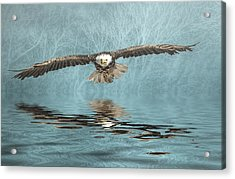 Acrylic Print featuring the photograph Eagle On Misty Lake by Brian Tarr