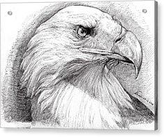 Eagle Portrait Acrylic Print