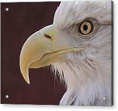 Eagle Portrait Freehand Acrylic Print by Ernie Echols
