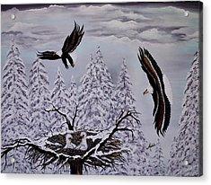 Eagle Family Majestry Acrylic Print by Adele Moscaritolo