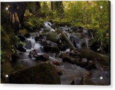 Acrylic Print featuring the photograph Early Autumn Cascades by Ellen Heaverlo