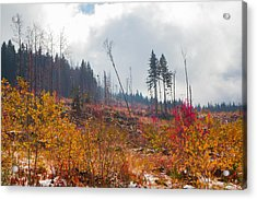 Acrylic Print featuring the photograph Early Autumn Yellow Red Colored Mountain View by Jivko Nakev