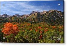 Early Fall Color Acrylic Print