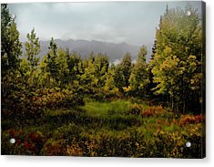Acrylic Print featuring the photograph Early Fall On Kebler Pass by Ellen Heaverlo