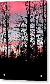 Early Fall Sky Vi Acrylic Print by Brian Lucia