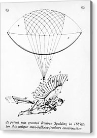 Early Flight Design Acrylic Print