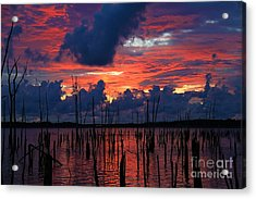 Early Light Acrylic Print