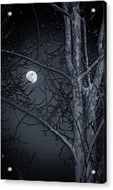 Acrylic Print featuring the photograph Early Moon In Black And White by Micah Goff