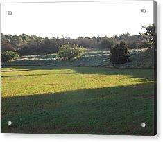 Early Morning Clover Field Acrylic Print