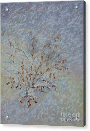 Early Morning Flurry Acrylic Print