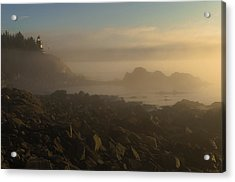 Early Morning Fog At Quoddy Acrylic Print by Marty Saccone