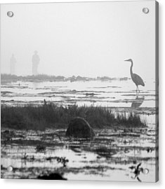 Early Morning Fog Acrylic Print by Mike McGlothlen