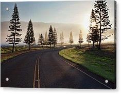 Early Morning Fog On Manele Road Acrylic Print
