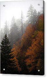 Early Morning Fog Smoky Mountains Acrylic Print by John Saunders